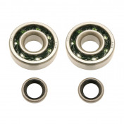 BEARING FOR CRANKSHAFT+SEALS FOR MOPED P2R FOR MBK 51, 41, 40, 88, CLUB ( KIT TPI 6302 QR POLYAMID)
