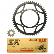 CHAIN AND SPROCKET KIT FOR BETA 50 RR RACING 2005> -DID RACING CHAIN 132 LINKS