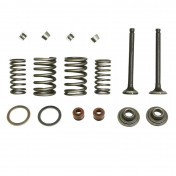 VALVE FOR MAXISCOOTER SCOOT 125 CHINESE 4T GY6 152QMI (FULL SET WITH SPRINGS , SPRINGS PLATES ,HALF BITS ,GUIDES+GASKETS) -P2R-